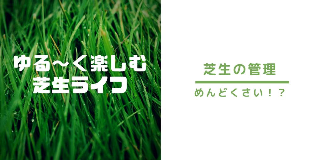 芝生は管理が簡単で楽しめる